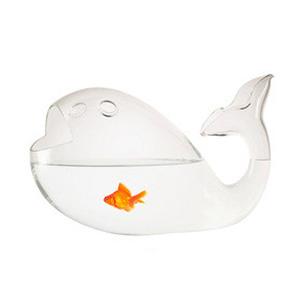 Aquarium Giona