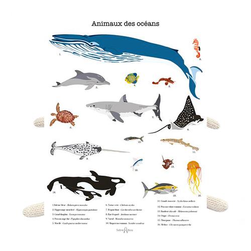 Poster les animaux des océans